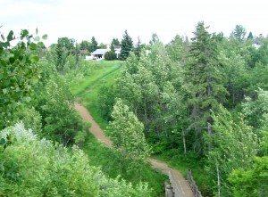 Edmonton's Kennedale Ravine