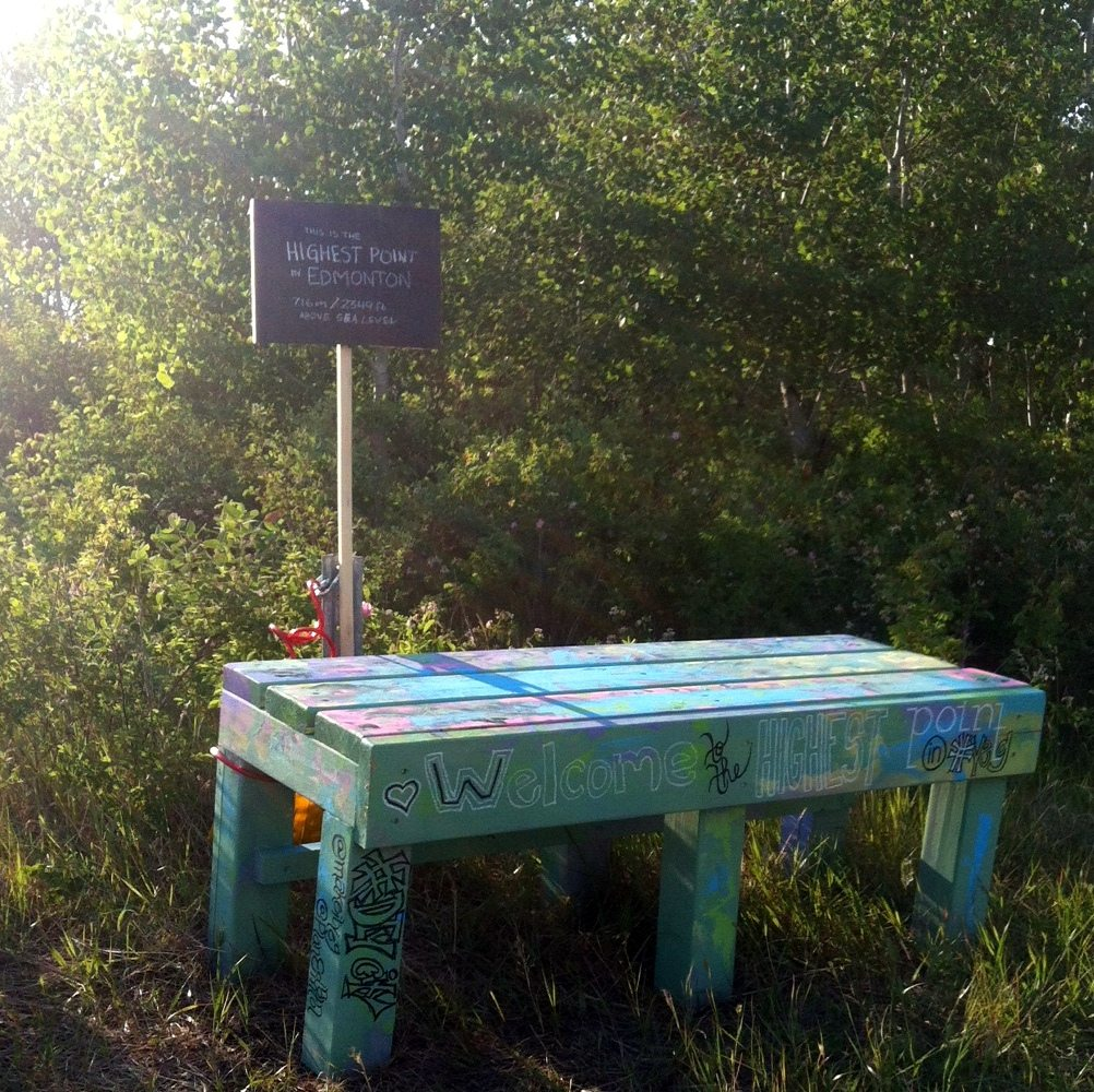 I was part of the team that organized the Highest Point Pop-Up Playground. This community-painted bench at the south end of the glacial kame in Rabbit Hill Natural Area was created as part of the pop-up.